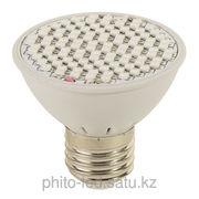 LED Фитолампа 10 ватт для растений и рассады всех видов