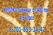 Купим пшеницу 4, 5 класса,  Лен